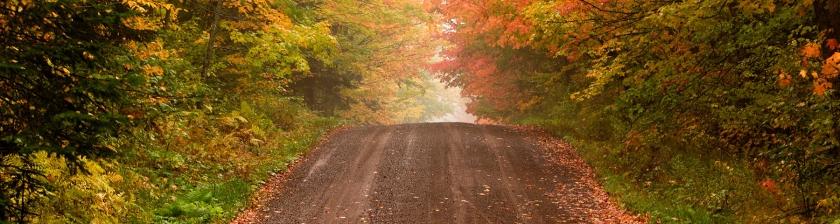 AutumnRoad2